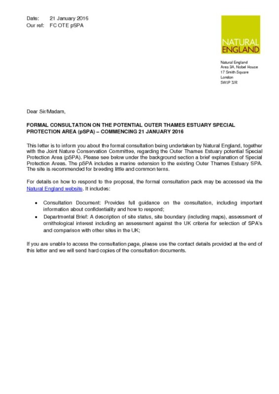 proposal letter for sale of property